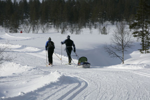 Kiilopää, cross-country skiing with pulka
