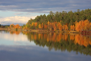 Lake Inari autumn colours